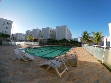 Alugar Apartamento / Padrão em São José do Rio Preto R$ 850,00 - Foto 19