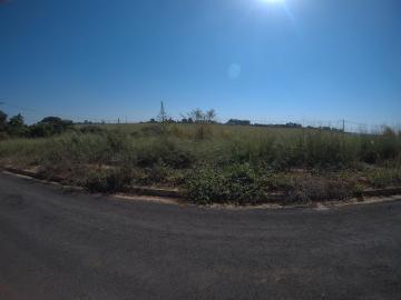 Comprar Terreno / Padrão em São José do Rio Preto apenas R$ 117.000,00 - Foto 1