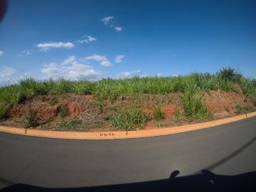 Comprar Terreno / Padrão em Bady Bassitt apenas R$ 64.000,00 - Foto 1