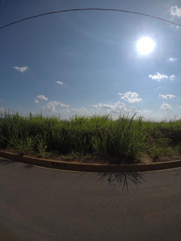 Comprar Terreno / Padrão em Bady Bassitt apenas R$ 64.000,00 - Foto 10