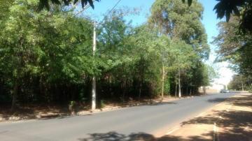 Comprar Terreno / Área em Olimpia R$ 860.000,00 - Foto 3
