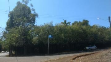 Comprar Terreno / Área em Olimpia R$ 860.000,00 - Foto 6