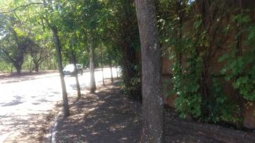 Comprar Terreno / Área em Olimpia R$ 860.000,00 - Foto 9