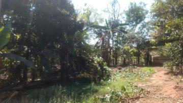 Comprar Terreno / Área em Olimpia R$ 860.000,00 - Foto 18