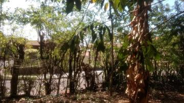 Comprar Terreno / Área em Olimpia R$ 860.000,00 - Foto 19