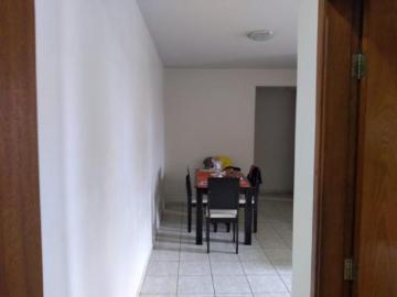 Comprar Apartamento / Padrão em SAO JOSE DO RIO PRETO apenas R$ 250.000,00 - Foto 3