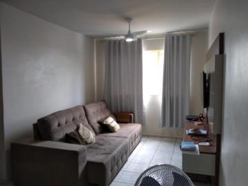 Comprar Apartamento / Padrão em SAO JOSE DO RIO PRETO apenas R$ 250.000,00 - Foto 1