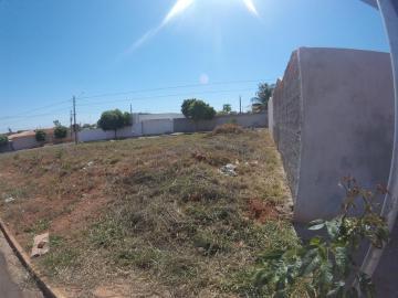 Sao Jose do Rio Preto Residencial Vila Madalena Terreno Venda R$412.500,00  Area do terreno 374.97m2