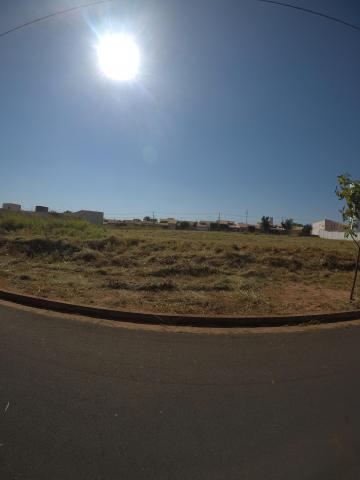 Sao Jose do Rio Preto Residencial Vila Madalena Terreno Venda R$463.000,00  Area do terreno 421.00m2