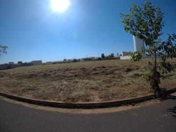 Sao Jose do Rio Preto Residencial Vila Madalena Terreno Venda R$485.000,00  Area do terreno 483.80m2