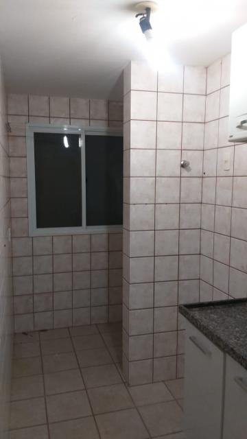Alugar Apartamento / Padrão em São José do Rio Preto R$ 550,00 - Foto 24