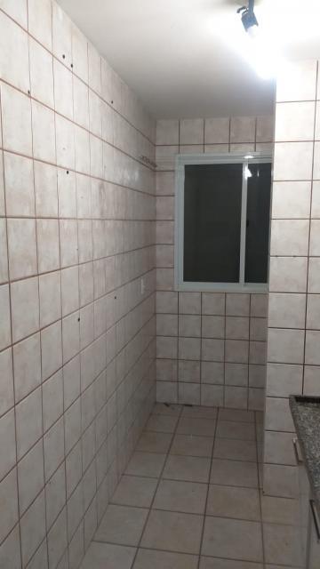 Alugar Apartamento / Padrão em São José do Rio Preto R$ 550,00 - Foto 25
