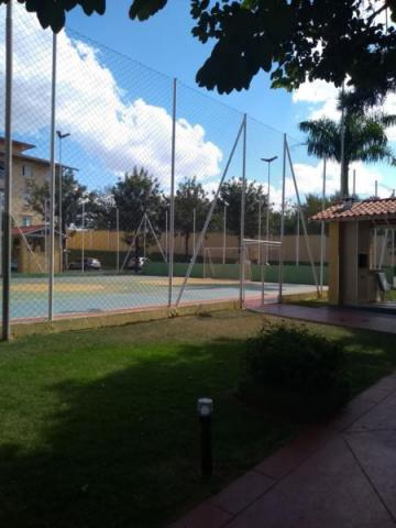 Alugar Apartamento / Padrão em São José do Rio Preto R$ 550,00 - Foto 2