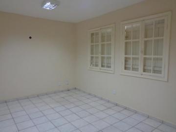 Alugar Comercial / Casa Comercial em São José do Rio Preto R$ 2.000,00 - Foto 13