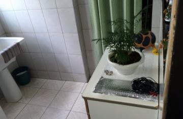 Comprar Apartamento / Padrão em SAO JOSE DO RIO PRETO apenas R$ 270.000,00 - Foto 4