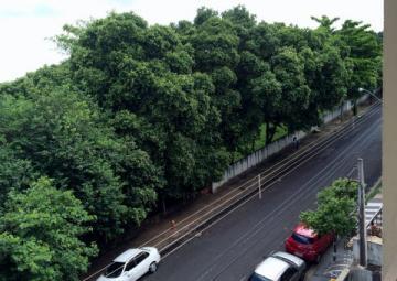 Comprar Apartamento / Padrão em SAO JOSE DO RIO PRETO apenas R$ 270.000,00 - Foto 14