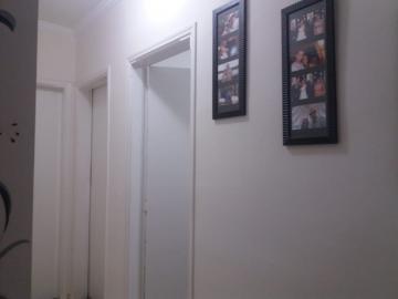 Comprar Apartamento / Padrão em São José do Rio Preto apenas R$ 280.000,00 - Foto 3