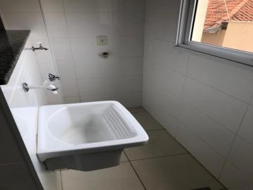 Alugar Apartamento / Padrão em SAO JOSE DO RIO PRETO apenas R$ 900,00 - Foto 9