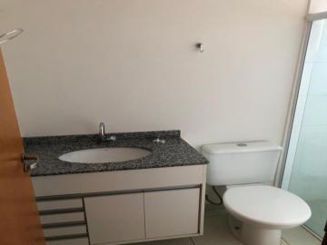Alugar Apartamento / Padrão em SAO JOSE DO RIO PRETO apenas R$ 900,00 - Foto 16