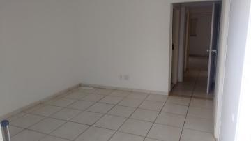 Sao Jose do Rio Preto Vila Santa Cruz Comercial Locacao R$ 1.800,00 Area construida 78.39m2
