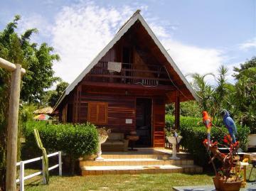 Comprar Terreno / Área em Aparecida do Taboado apenas R$ 5.000.000,00 - Foto 5