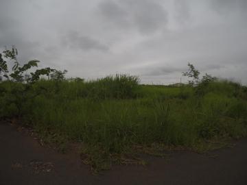Comprar Terreno / Padrão em Bady Bassitt apenas R$ 98.000,00 - Foto 4