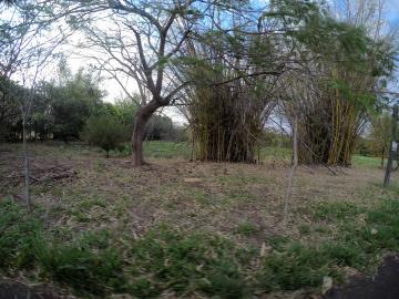 Comprar Terreno / Condomínio em São José do Rio Preto apenas R$ 420.000,00 - Foto 8