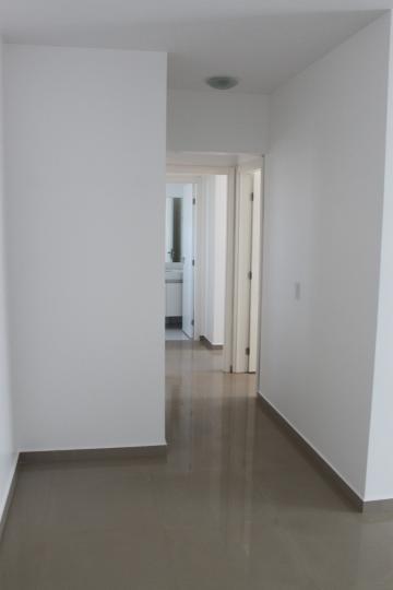 Alugar Apartamento / Padrão em SAO JOSE DO RIO PRETO apenas R$ 1.600,00 - Foto 18