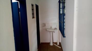 Comprar Comercial / Salão em São José do Rio Preto R$ 800.000,00 - Foto 12