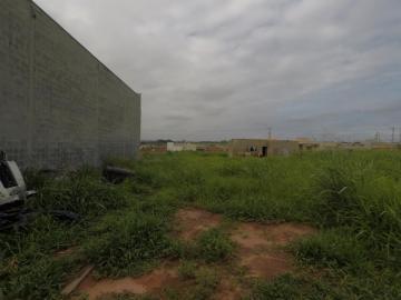 Comprar Terreno / Padrão em Bady Bassitt apenas R$ 74.000,00 - Foto 1