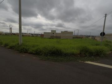 Comprar Terreno / Padrão em Bady Bassitt R$ 109.000,00 - Foto 1
