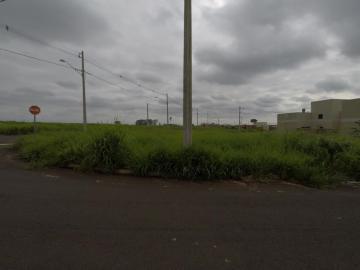 Comprar Terreno / Padrão em Bady Bassitt R$ 109.000,00 - Foto 3