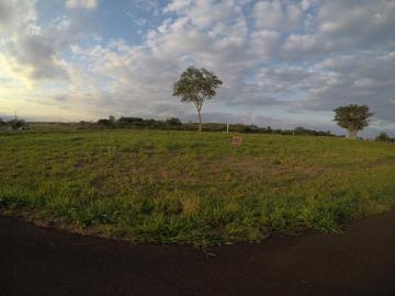 Comprar Terreno / Condomínio em São José do Rio Preto apenas R$ 393.500,00 - Foto 1