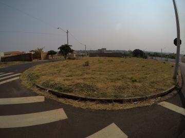 Sao Jose do Rio Preto Residencial Vila Madalena Terreno Venda R$237.000,00  Area do terreno 226.24m2