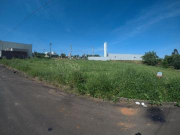 Guapiacu Antonieta ll Terreno Venda R$112.000,00  Area do terreno 558.90m2