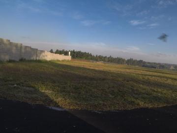 Comprar Terreno / Condomínio em São José do Rio Preto apenas R$ 393.500,00 - Foto 29