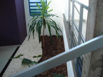 Comprar Casa / Padrão em São José do Rio Preto R$ 1.150.000,00 - Foto 9