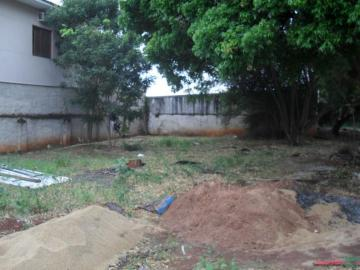 Comprar Terreno / Padrão em SAO JOSE DO RIO PRETO apenas R$ 306.000,00 - Foto 2