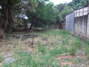 Comprar Terreno / Padrão em SAO JOSE DO RIO PRETO apenas R$ 306.000,00 - Foto 3