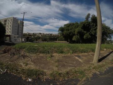 Comprar Terreno / Área em São José do Rio Preto apenas R$ 4.400.000,00 - Foto 7