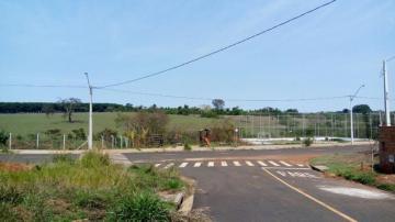 Comprar Terreno / Padrão em São José do Rio Preto R$ 80.000,00 - Foto 1
