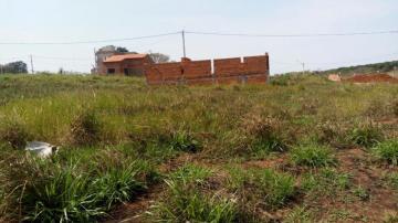 Comprar Terreno / Padrão em São José do Rio Preto R$ 80.000,00 - Foto 2