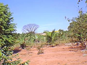 Sao Jose do Rio Preto Vila Toninho Rural Venda R$12.600.000,00 2 Dormitorios  Area do terreno 16800.00m2