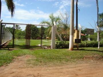 Comprar Rural / Chácara em São José do Rio Preto R$ 800.000,00 - Foto 26