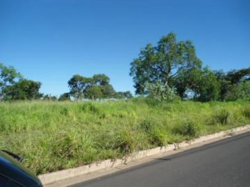 Sao Jose do Rio Preto Centro Area Venda R$19.200.000,00  Area do terreno 16300.00m2