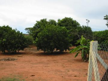 Comprar Casa / Condomínio em Mirassol R$ 1.100.000,00 - Foto 23