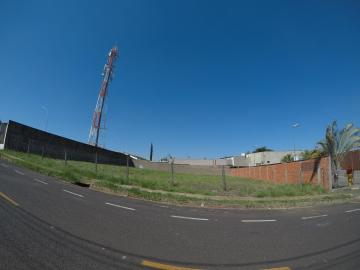 Comprar Terreno / Área em São José do Rio Preto - Foto 6