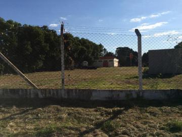 Comprar Terreno / Área em Mirassol apenas R$ 4.500.000,00 - Foto 2