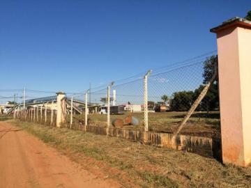 Comprar Terreno / Área em Mirassol apenas R$ 4.500.000,00 - Foto 4
