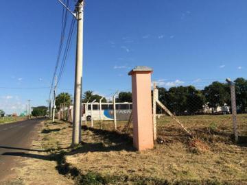Comprar Terreno / Área em Mirassol apenas R$ 4.500.000,00 - Foto 8